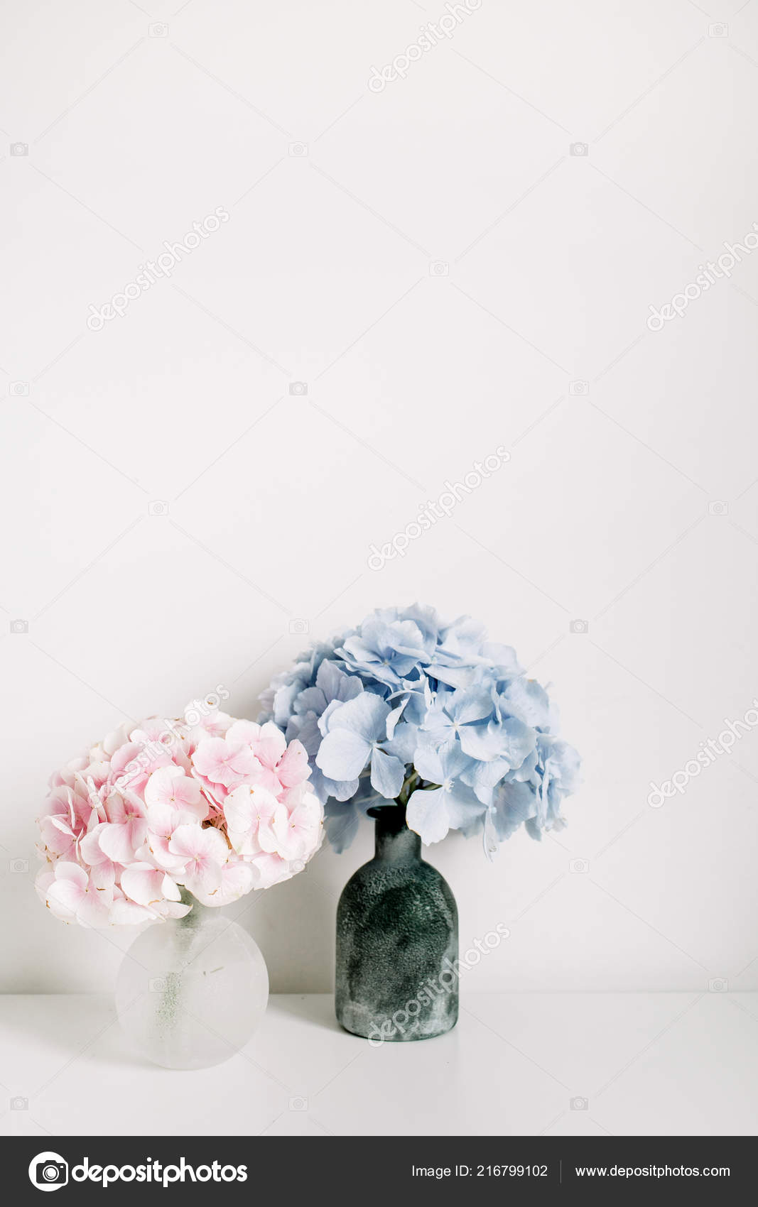 Pink And White Hydrangea Flower Arrangements Pink Blue Hydrangea Flower Bouquets White Background Minimal Interior Design Stock Photo C Maximleshkovich 216799102