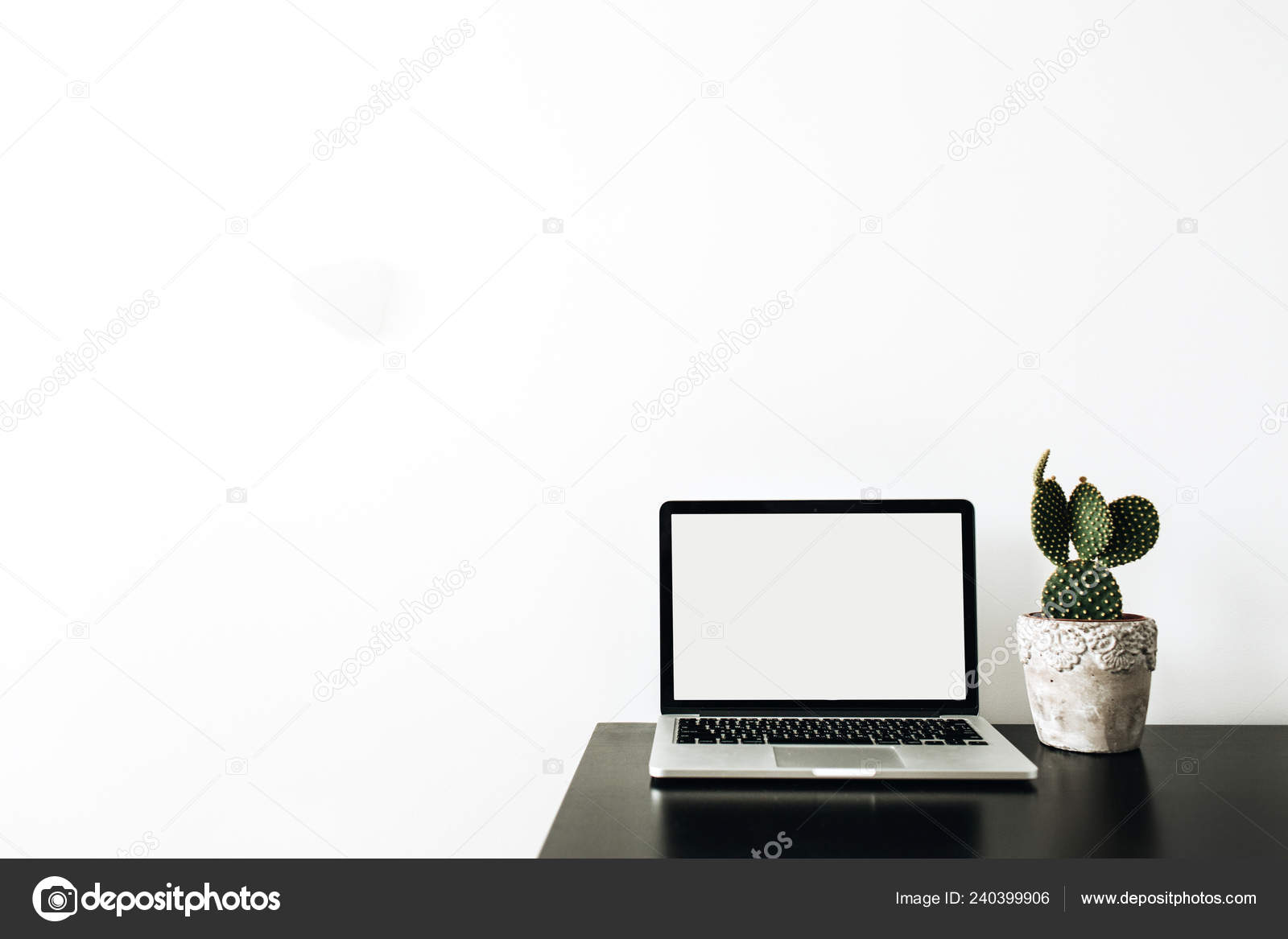 Laptop Empty Mockup Screen Succulent White Background Minimal Home