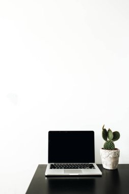 Minimal home office workspace. Laptop with mockup screen and succulent in flowerpot on white background. Blogger / freelancer business concept.