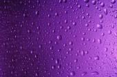 plnoformátový kapek na fialové pozadí