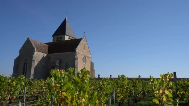 Chablis, Francie Říjen 16, 2018: vinice v Chablis, Bourgogne, Francie