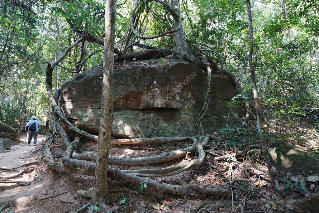 Siem Reap,Cambodia-January 9, 2019: A steep mountain path towards Kbal Spean in Siem Reap, Cambodia
