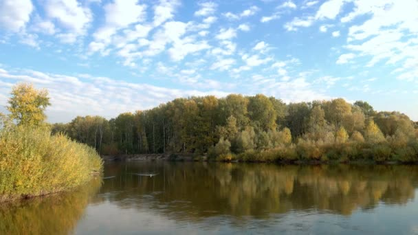 Őszi természet táj, kisétált az erdei tó partján,