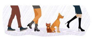 homeless cat and dog between men and women feet
