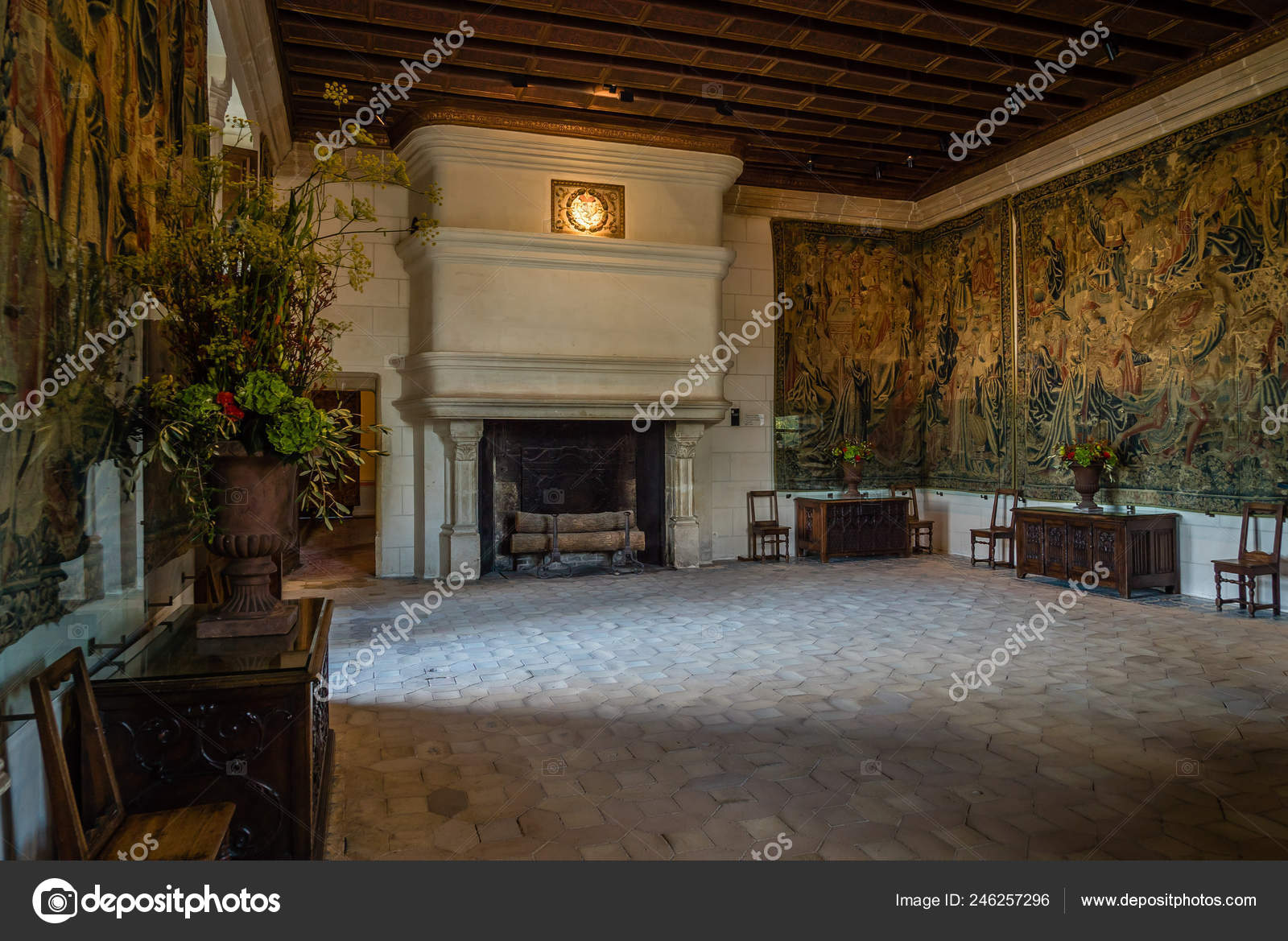 Large Fireplace Wall Covering Tapestry Chenonceau Castle Stock Editorial Photo C Bignoub 246257296
