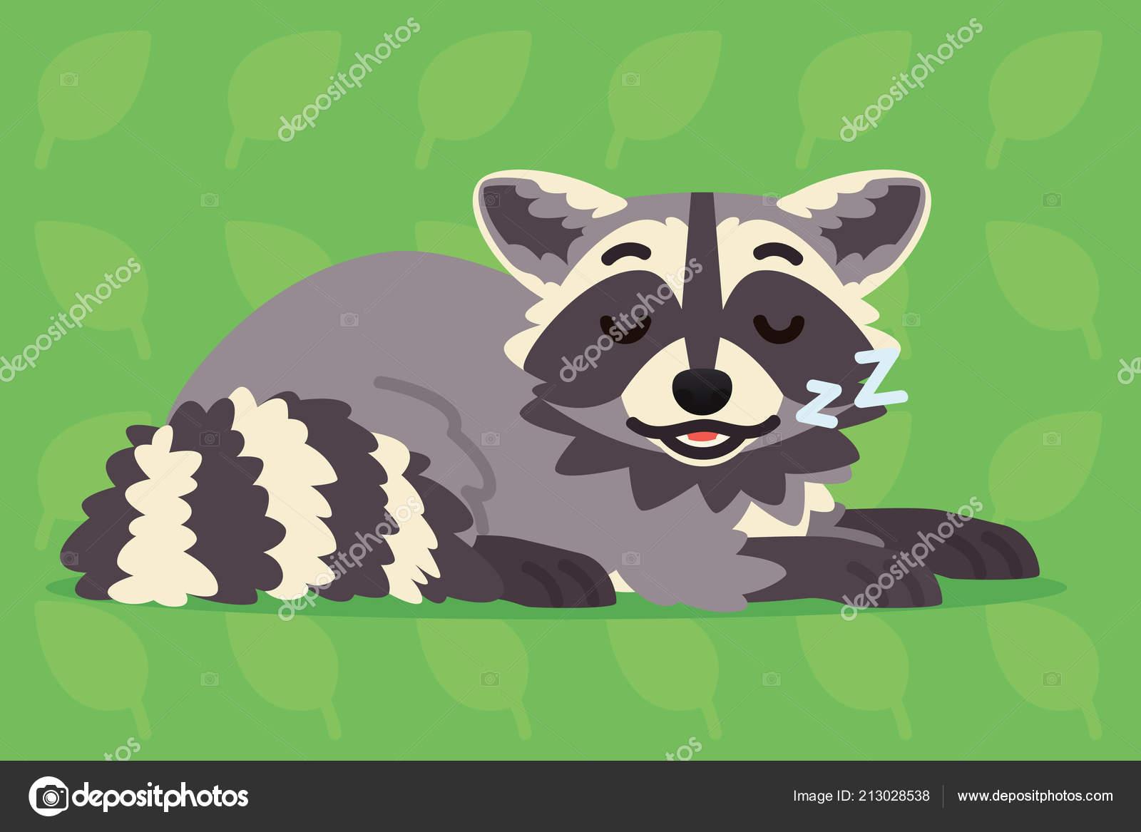 Cute raccoon sleeping  Vector illustration of a sleepy coon on green