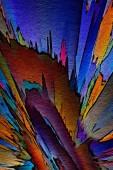 Fotografie Abstraktní malba, tapetách, tisk na plátně, olejové barvy, moderní kresba, texturou tahy, styl moderní impresionismu, teplý módní barvy, psychedelické návrhový vzor, surrealistické výtvarného umění