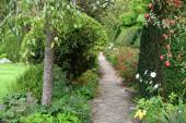 Park Garden Path fákkal