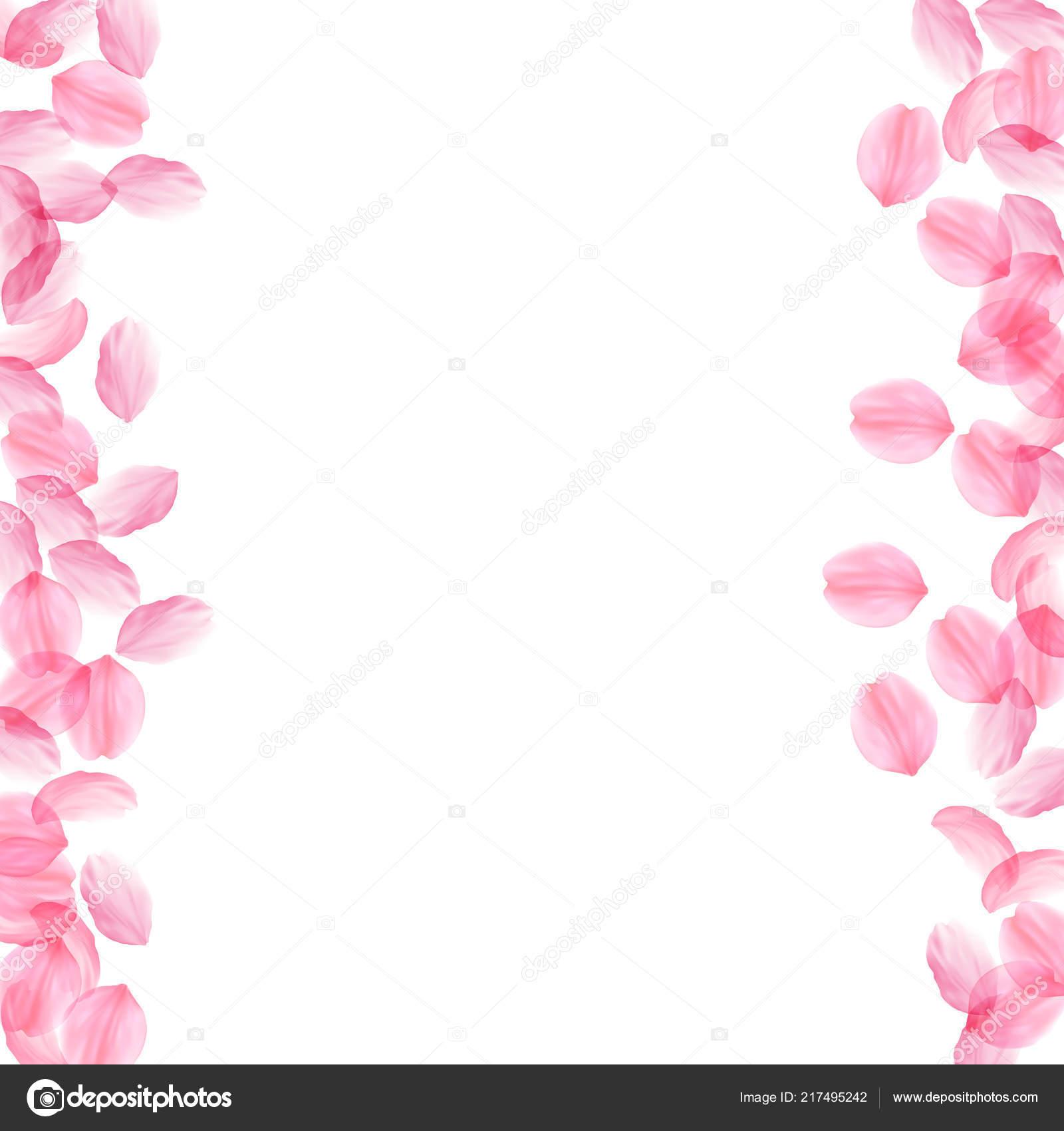 Sakura Petals Falling Down Romantic Pink Silky Big Flowers Thick