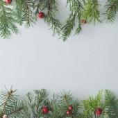 Kreativní Vánoční pozadí z přírodního zimní stálezelených stromů, větví a červené bobule, příroda koncepce