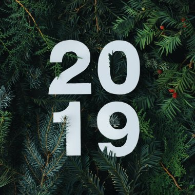 2019 year Merry Christmas and happy New Year background with evergreen tree branches and white numbers, creative layout, Nature flat lay concept.