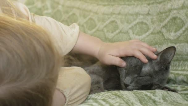 glückliches Mädchen mit blonden Haaren und Zöpfen, das auf dem Sofa liegt und eine graue Katze streichelt