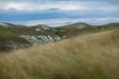 Sommerlandschaft. ein Feld vor dem Hintergrund der Berge