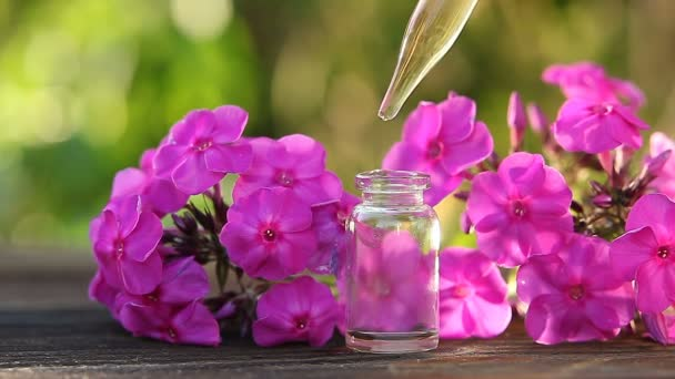 Essenz der Blumen auf dem Tisch im schönen Glas