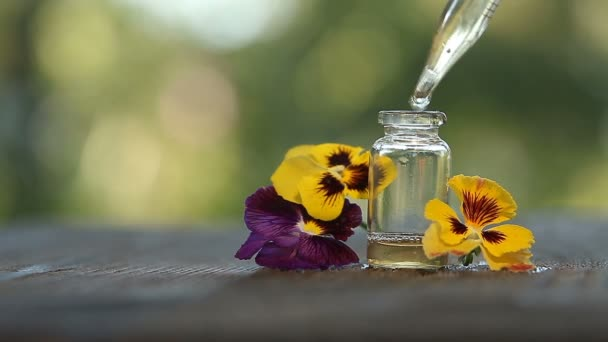 pansies essential oil in  beautiful bottle on  wooden White background