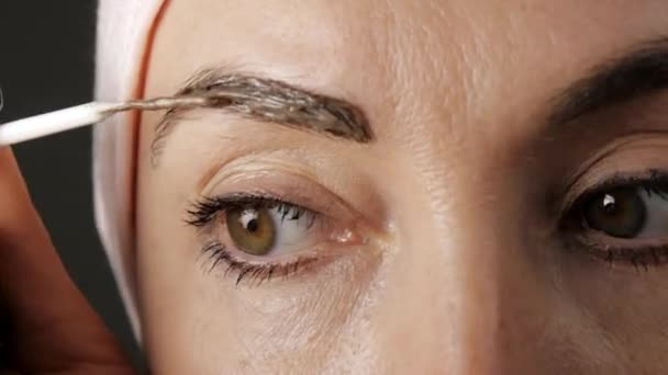 Dyeing of eyebrows. Close-up of applying brown paint to eyebrows.