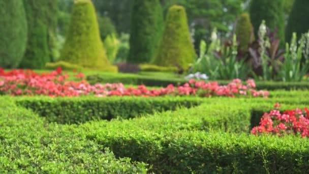 schöner Garten zu Hause