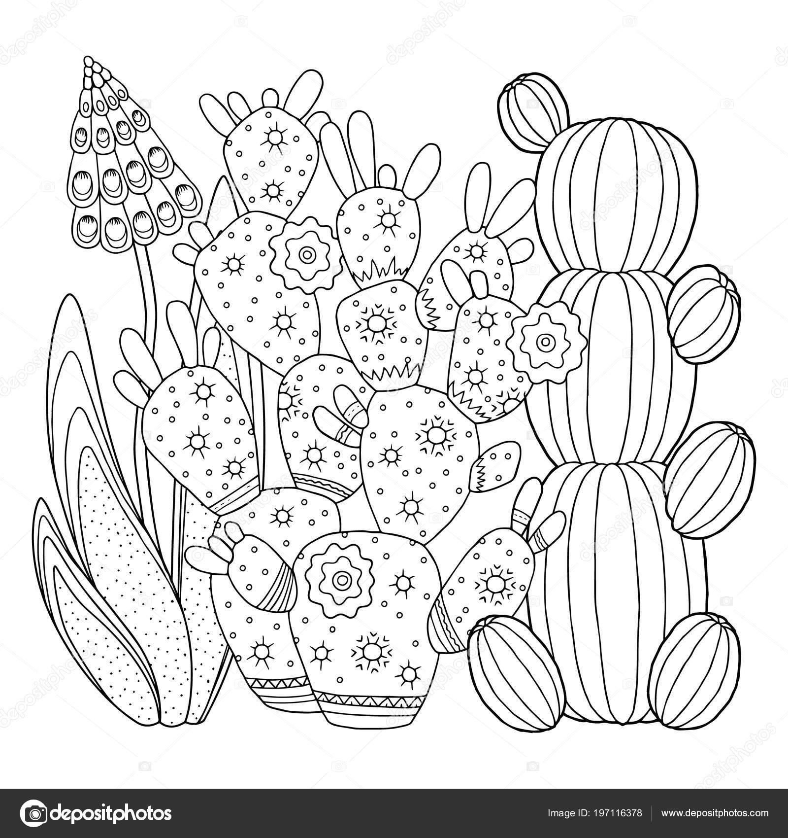 Imágenes Nopales Para Colorear Imagen Lineal Sobre Nopal