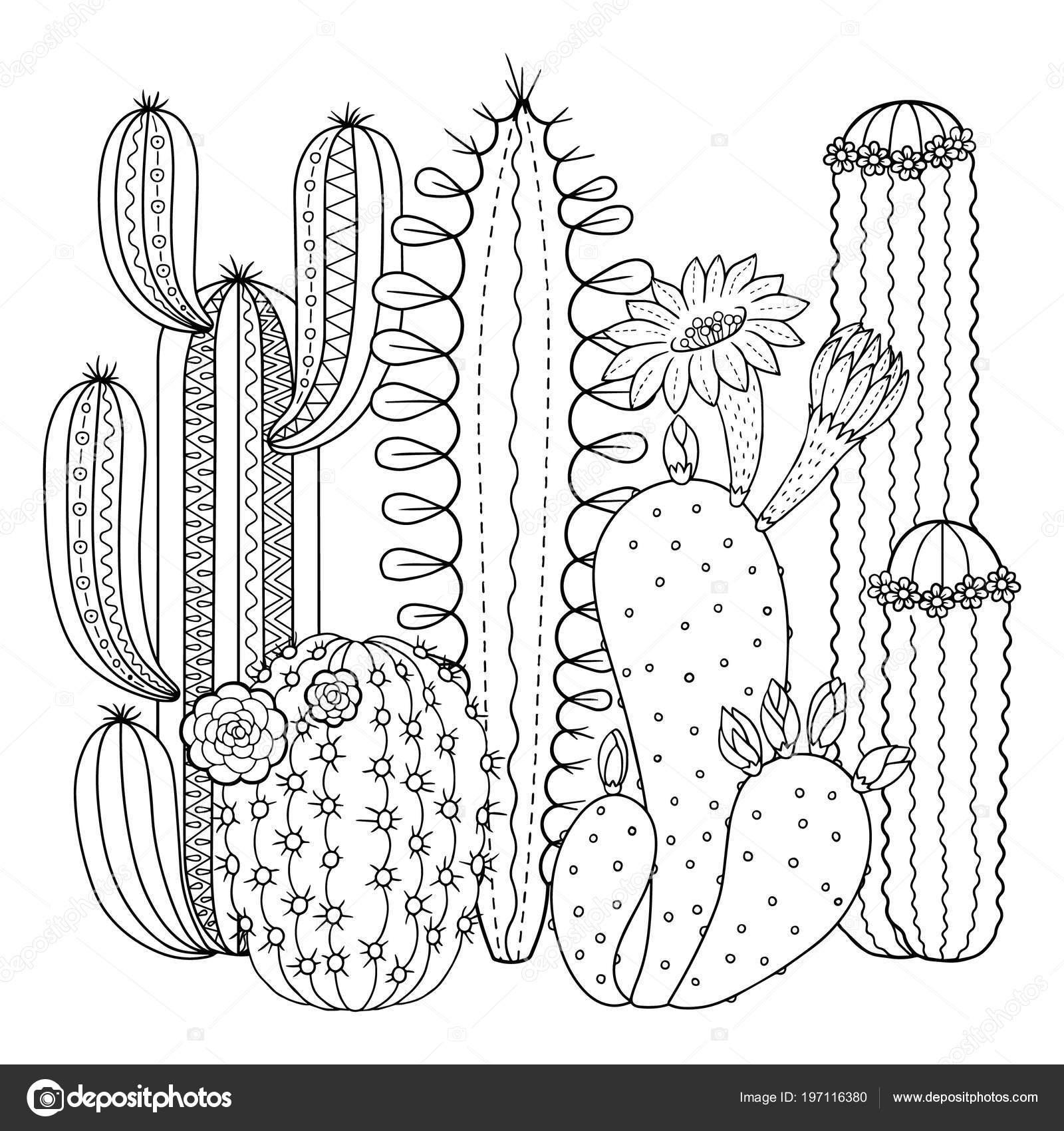Imágenes Nopales Y Cactus Para Colorear Imagen Lineal
