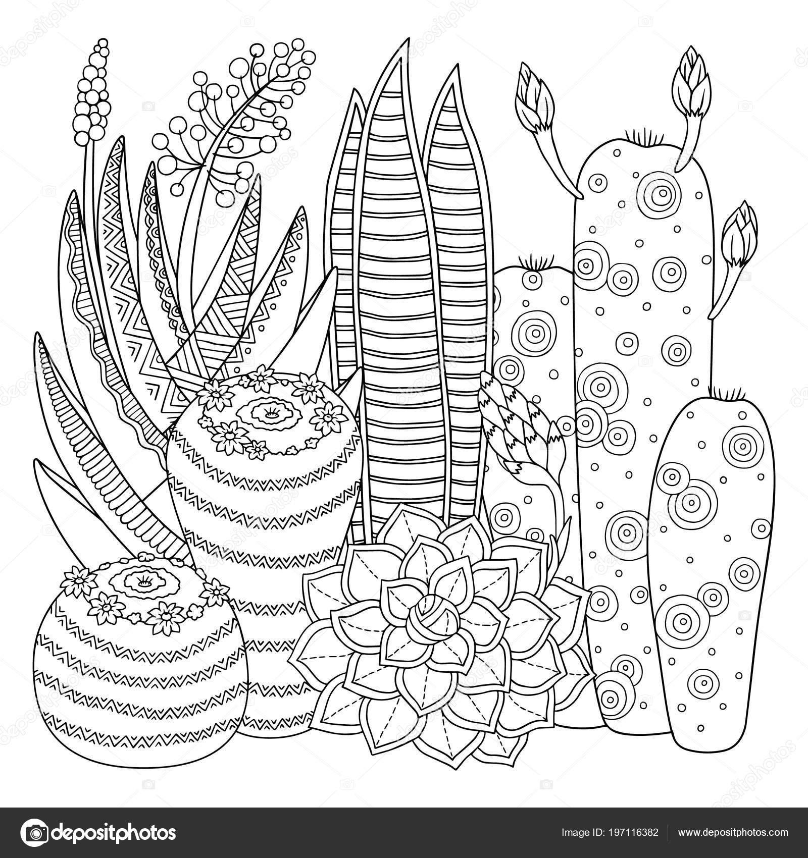Imágenes Cactus Para Pintar Imagen Lineal Sobre Nopal