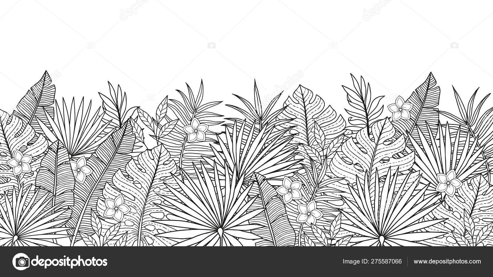 Coloring Pages Adult Tropical Background Jungles Plants
