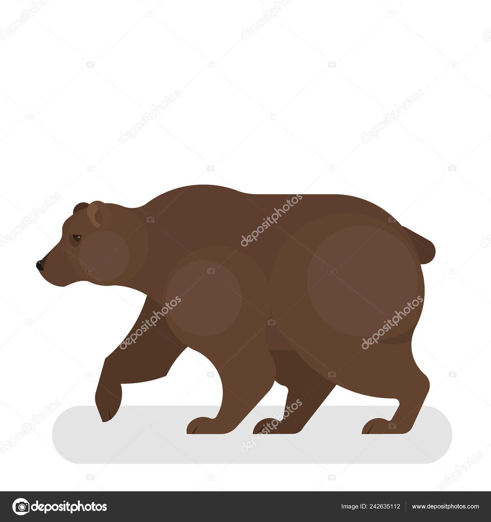 το δάσος των αρκούδων