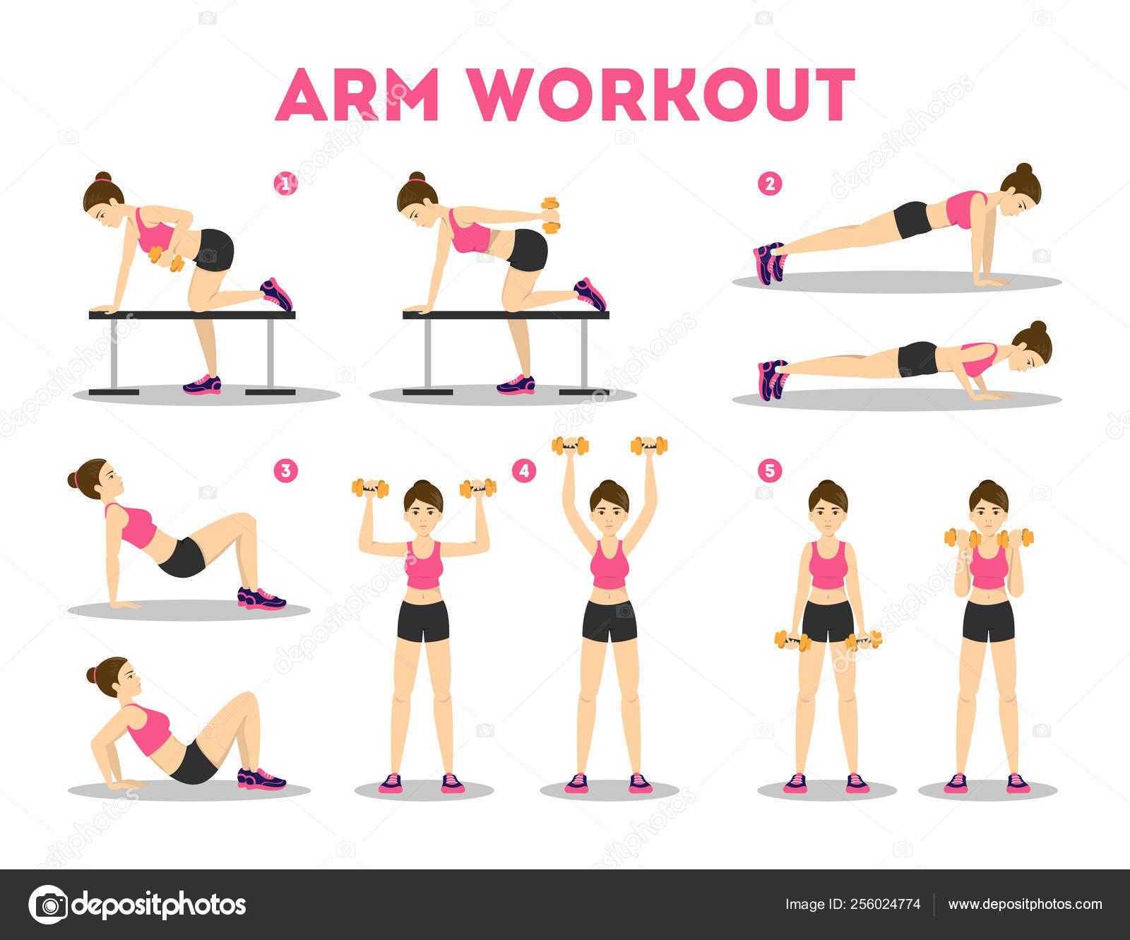 Entraînement de bras pour la femme. Collection d'exercices ...