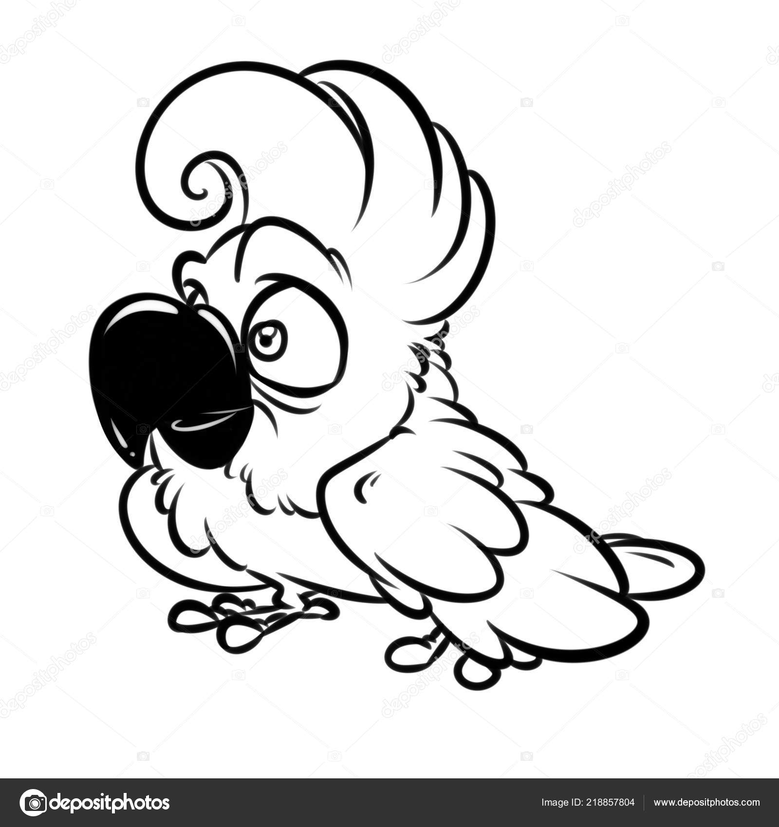 Funny Parrot Cockatoo Cartoon Illustration Isolated Image Coloring