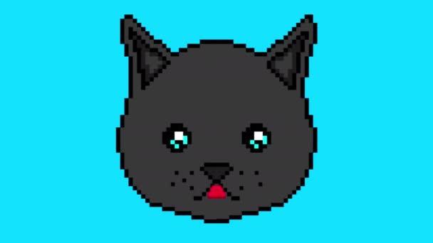 Pixel kočka pohybuje očima a zobrazuje jazyk na modrém pozadí pozadí. Připraven k použití v jakémkoli projektu.