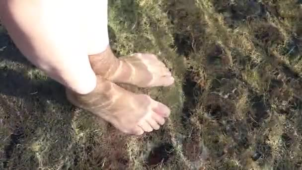 The girl runs barefoot on the green beach of moss. The sun's rays are reflected in the water and fall into the camera. Slow motion