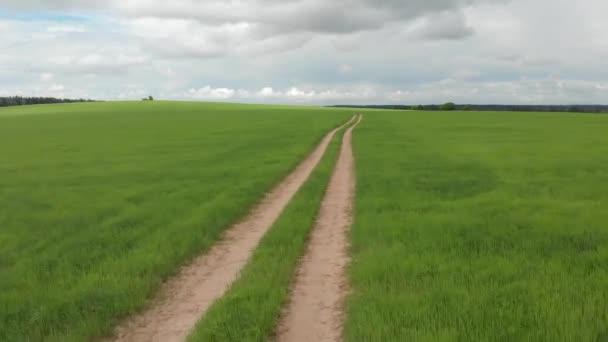 Venkovská silnice, která prochází zelenými loukami a poli. Slunečný letní den
