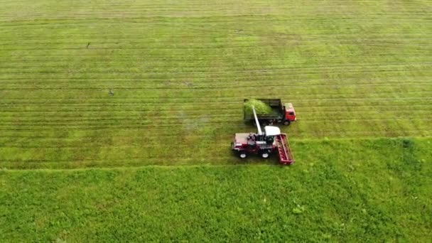 Aerial photography. Wide and close-up shots of a harvester cutting green grass. Birds of prey swirl over cars. The concept of sustainable biofuels and organic food.