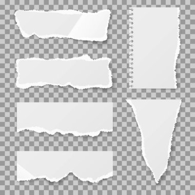 Blank torn paper with bends and tears. Vector set