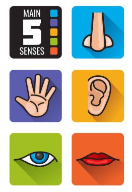 Five senses, nose, hand, mouth, eye, ear vector icons set