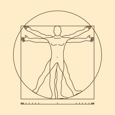 Leonardo da vinci vitruvian man form similar vector illustration