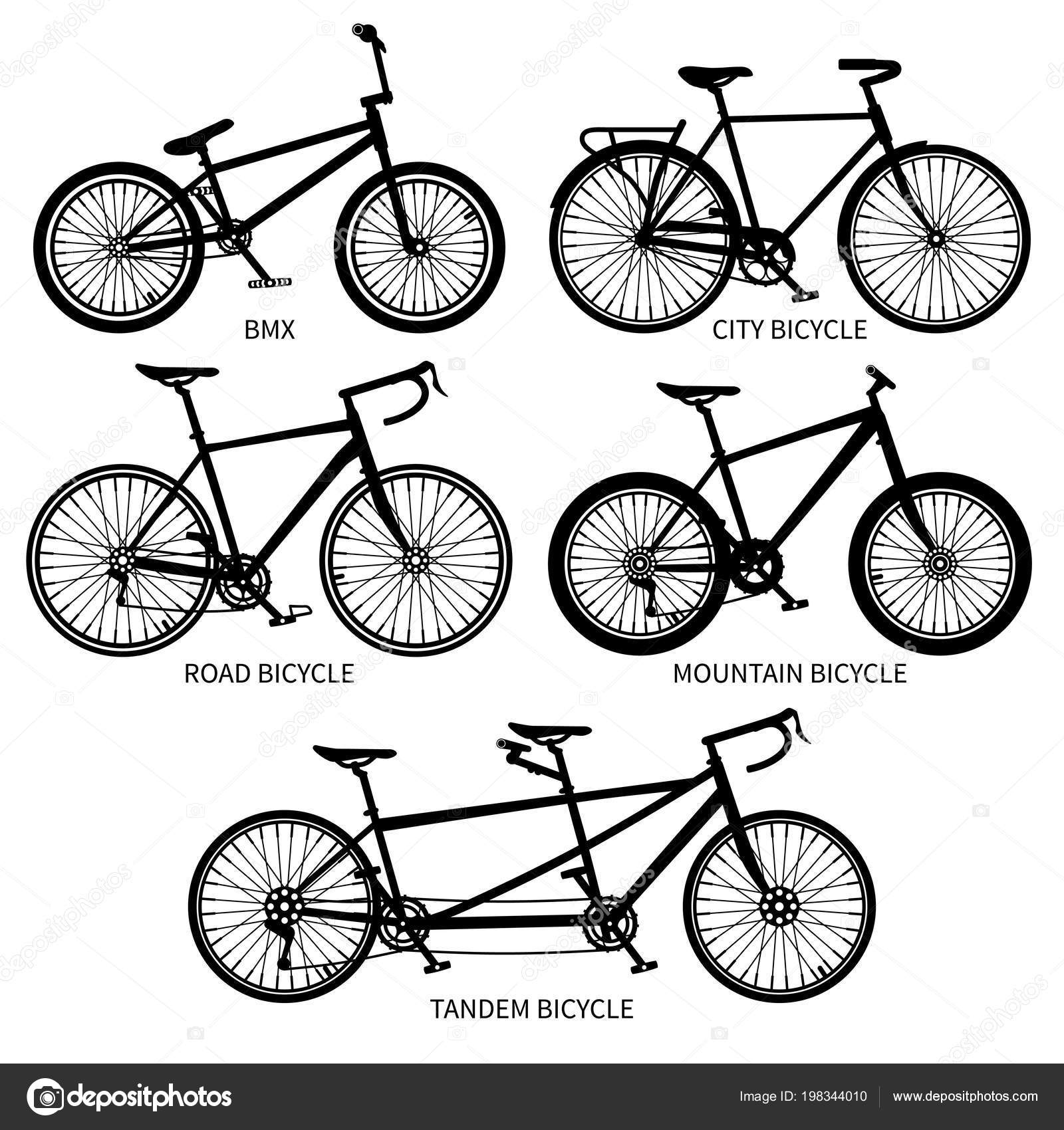 360754aa82b Bike types vector black silhouettes. Road, mountain, tandem bicycles  isolated. Set of bicycle vintage, sport transport with pedal illustration —  Vector by ...