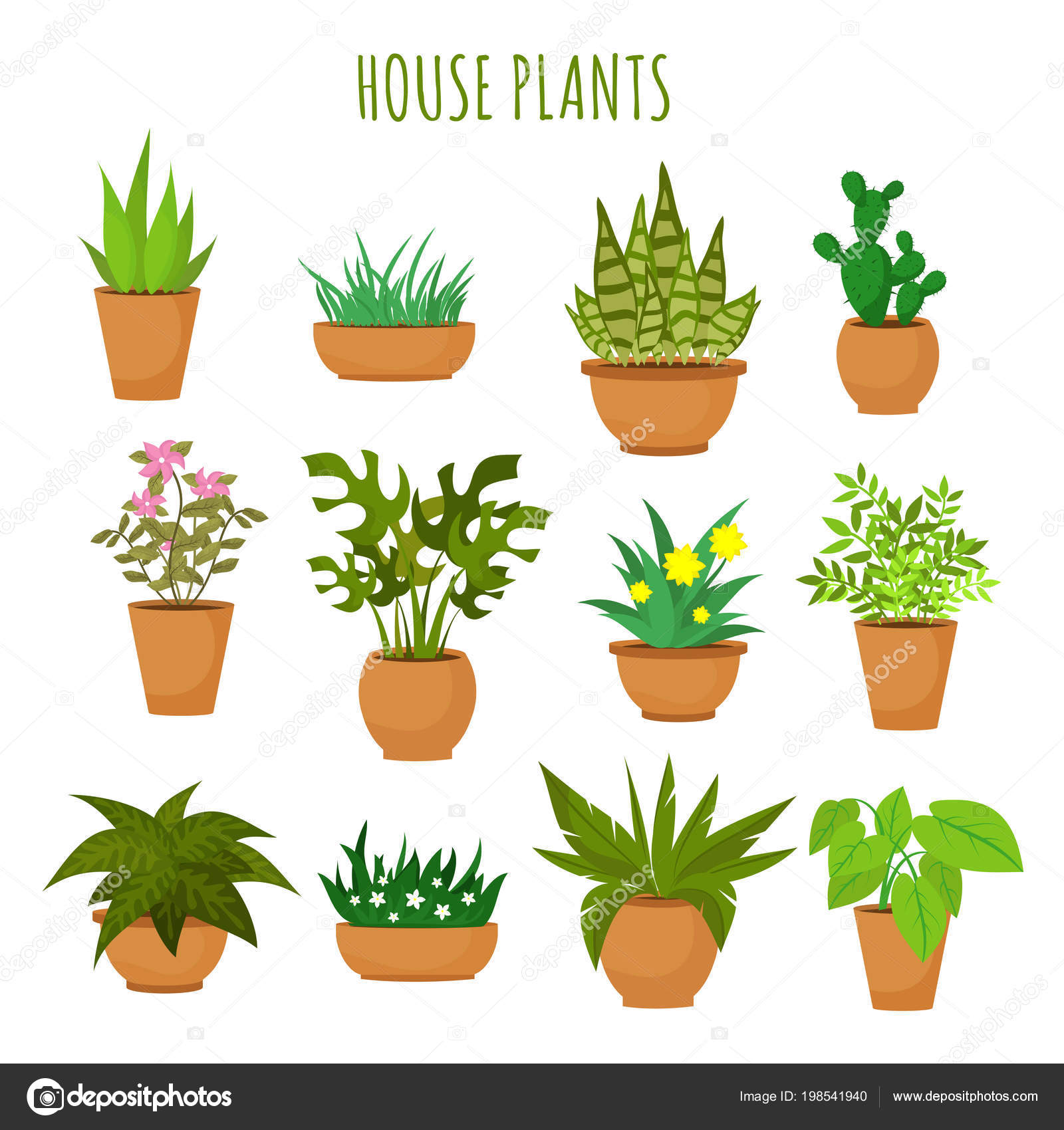 Indoor House Green Plants Flowers Isolated White Vector Set Green