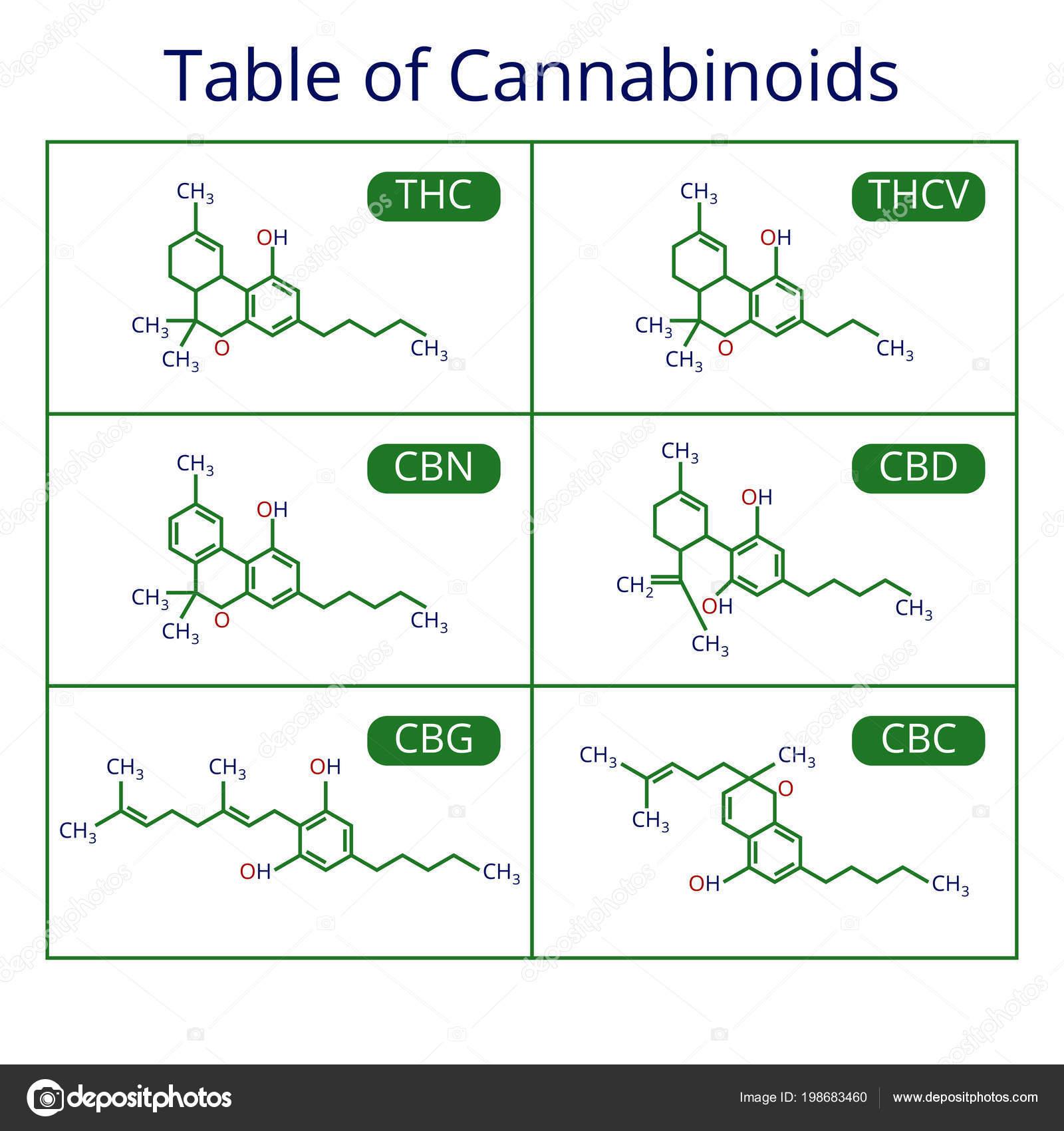 Cannabis Skelett Cbd Formel Marihuana Moleküle Vektor Set