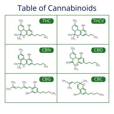 Cannabis skeletal cbd formula. Marijuana molecules vector set
