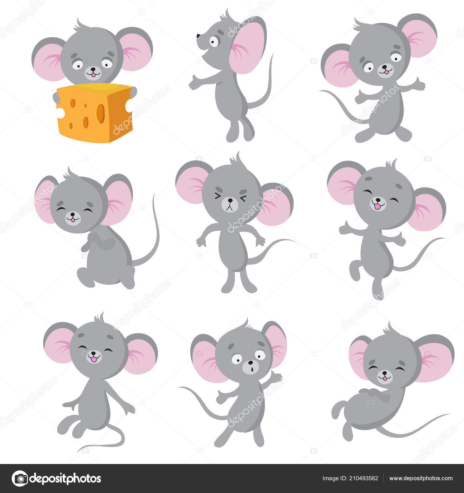 cartoon mouse gray mice in different poses cute wild rat animal