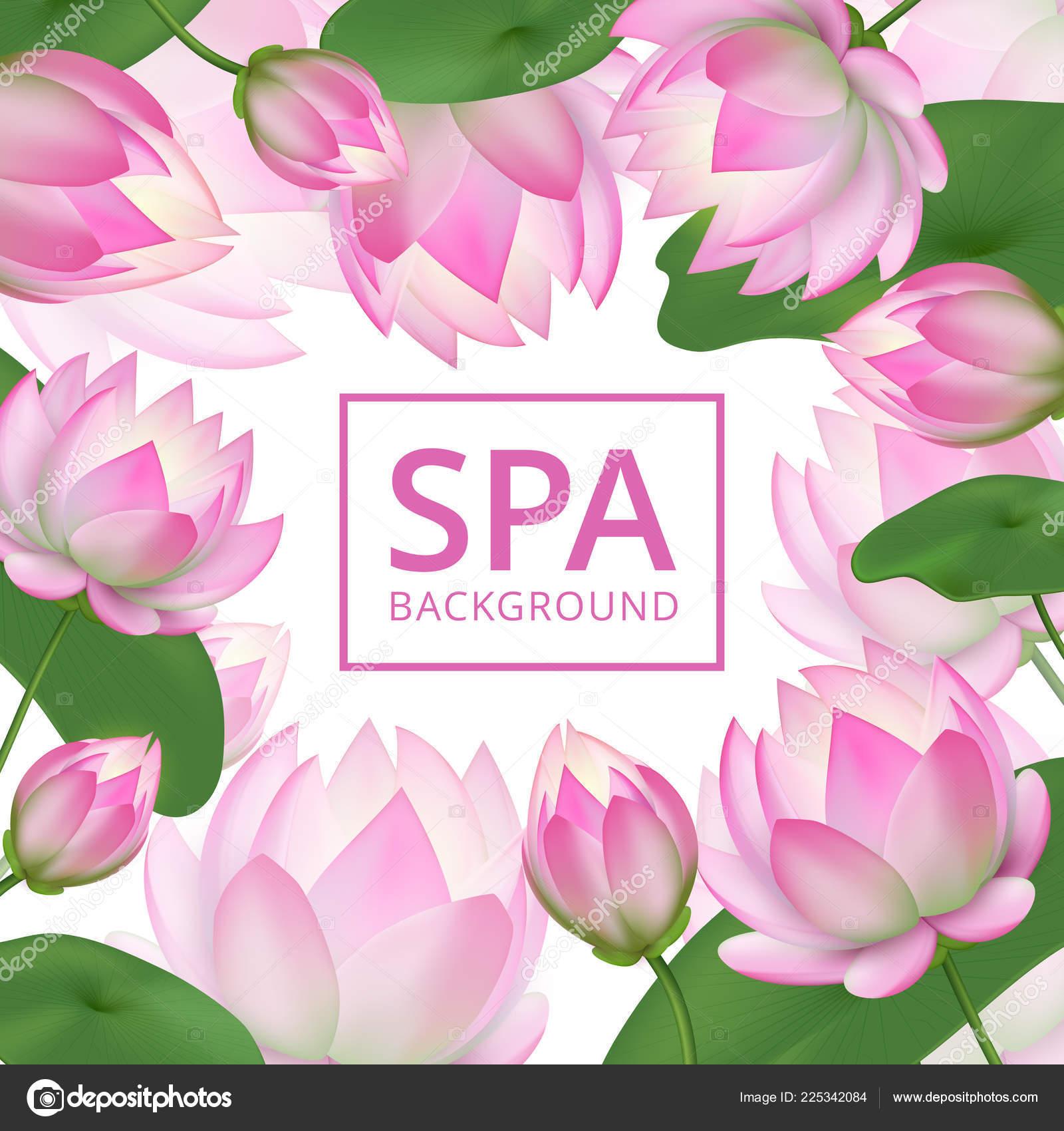 Fondo De Flores De Loto Rosa Invitación A Jardín Plantilla