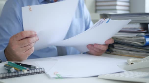 Businessman Archive Work Reading Contracts and Accounting Papers