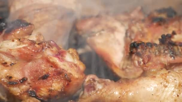 Close Up Barbecue with Chicken Meat Roasted an O Grill with Charcoal ...