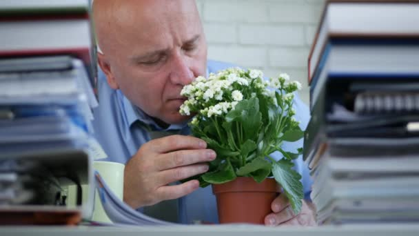 Businessman in Accounting Archive Stop Working and Arrange a Flower on the Desk