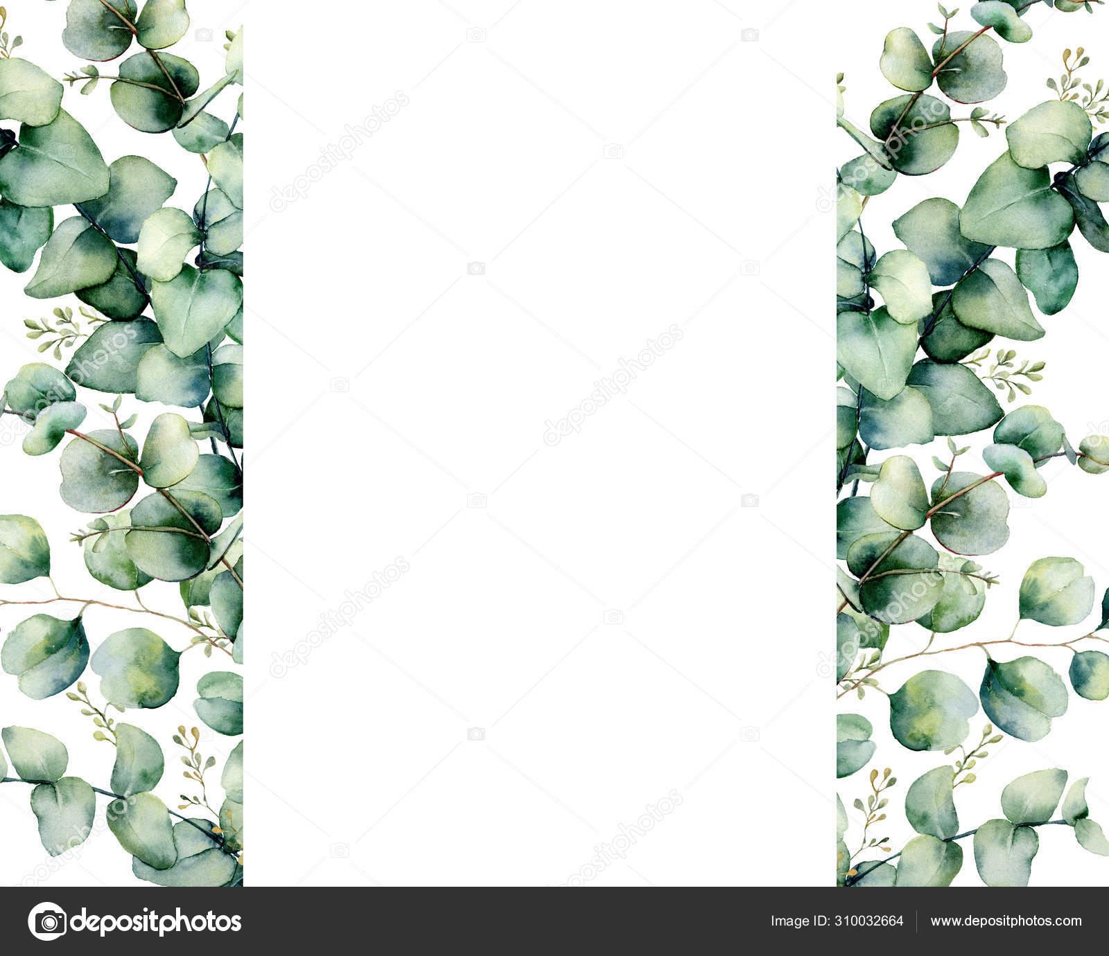 Image Result For Kaktus Vektor Blattzeichnung