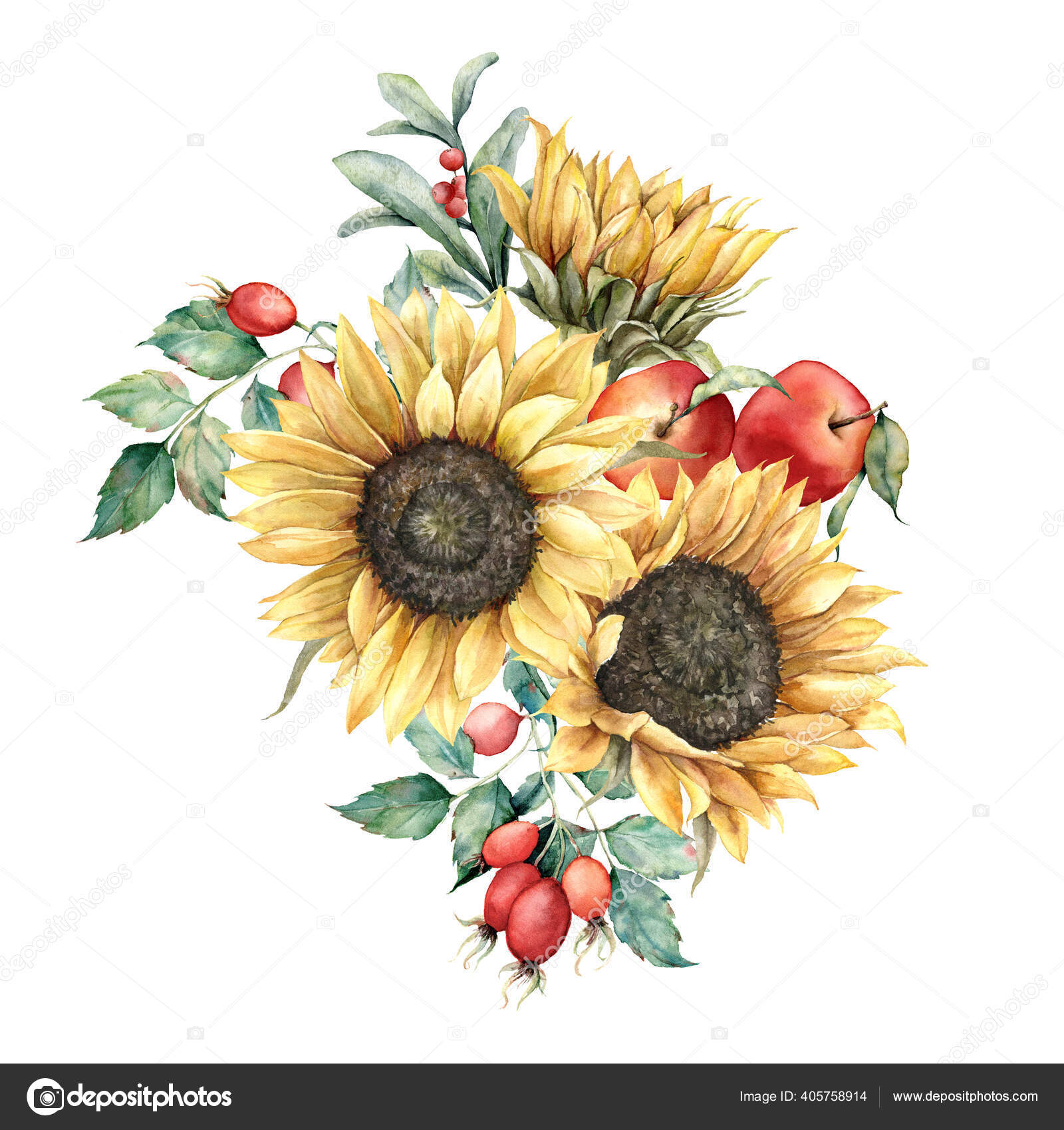 Watercolor Autumn Bouquet With Sunflowers Berries Leaves And Dogroses Hand Painted Rustic Card Isolated On White Background Floral Illustration For Design Print Fabric Or Background Stock Photo C Derbisheva 405758914