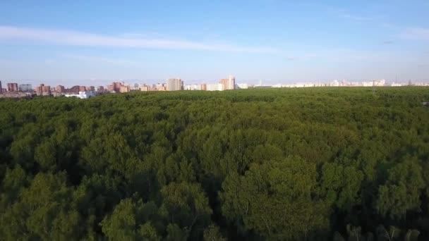 A drone repül egy erdő közelében Moszkva. A magasságból származó nézet.