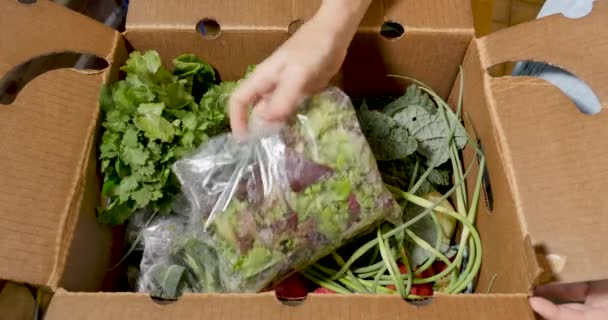Rozbalením krabice čerstvé sezonní organické zeleniny z trhu zemědělců