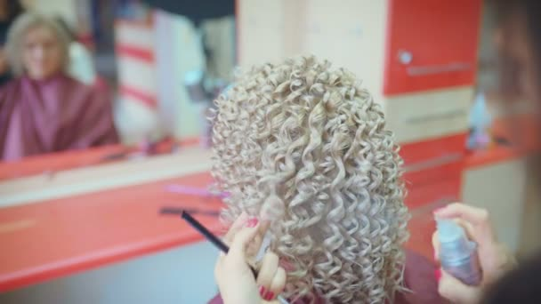 Usmívající se žena kadeřník dělá účes pro hezkou mladou ženu s dlouhé plavé vlasy v kadeřnictví
