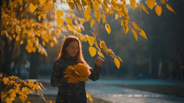 žlutý podzimní list v ruce na pozadí stromů